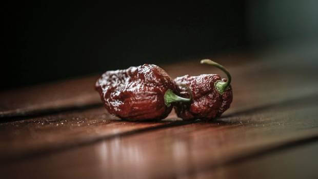 The big black mama is a hybrid chilli that reaches 1.4 million Scoville Heat Units